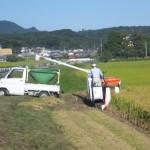 20150929稲刈り1