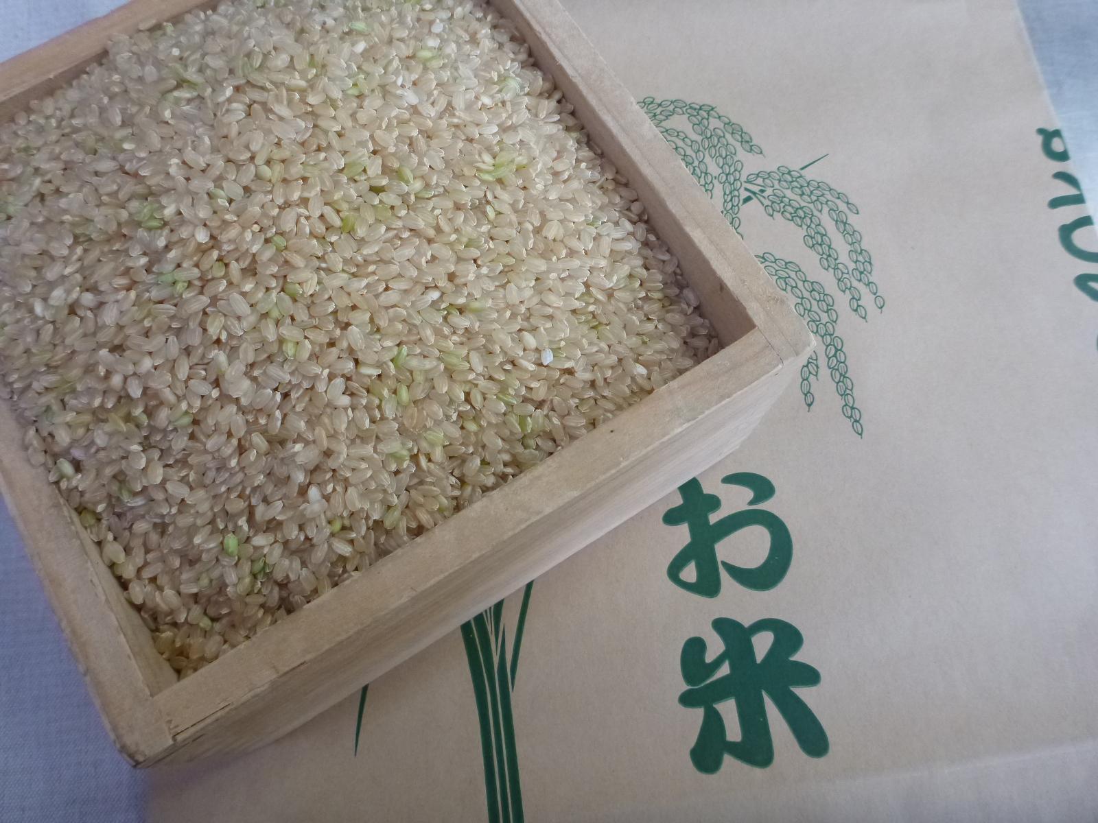 どんとこい、ヒノヒカリ 玄米・7分つき