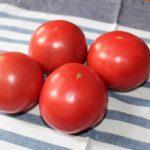 20160531トマト