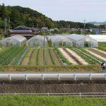 20160601田中町1