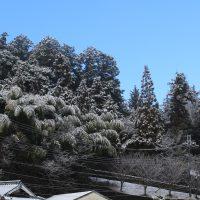 20170117大寒波5